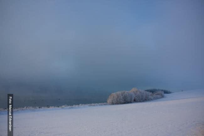 Ned Mot Fjorden