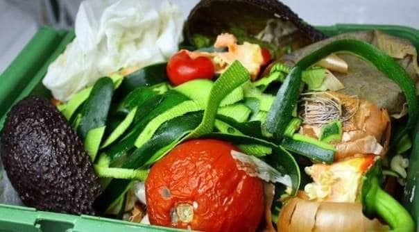 organisk avfall - aksjonsforskning